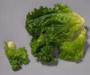 Салат из дичи