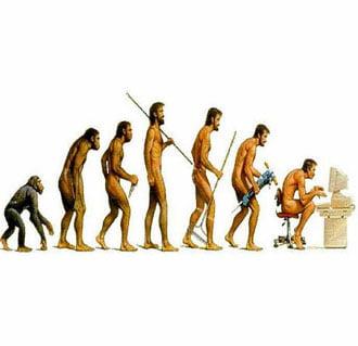История развития психологии