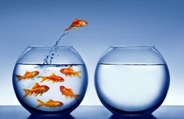 Формируем навыки уверенности в себе